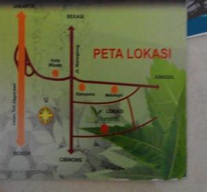 petalokasi ph9